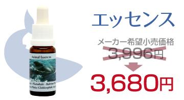 海の日セール